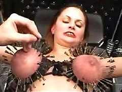 Hundreds needles in tits