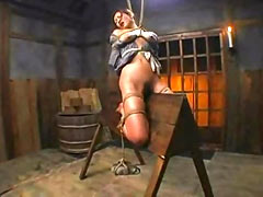 Wooden horse torture